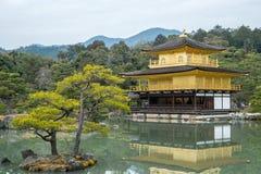 Guld- paviljong på den Kinkakuji templet, Kyoto Japan Royaltyfri Foto