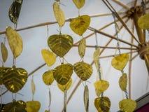 Guld- Peepul blad Arkivfoton