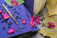 Guld- penna och gamla böcker Fotografering för Bildbyråer