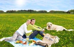guld- picknickretriever för par royaltyfri fotografi