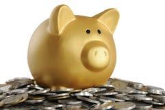 Guld- Piggybank med mynt Arkivbilder