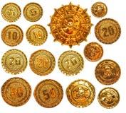 Guld piratkopierar medaljongmedaljongen Royaltyfria Bilder