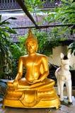 Guld- plast- Buddha med den vita plast- hästen Royaltyfria Foton