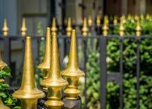 guld- port Arkivfoton