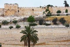 Guld- port i Jerusalem Fotografering för Bildbyråer