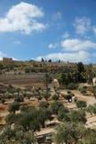 Guld- port i Jerusalem Royaltyfri Fotografi