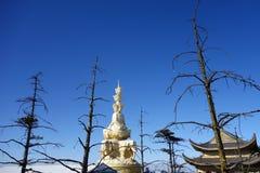 Guld- Puxian Buddha på MT Emei Arkivbilder