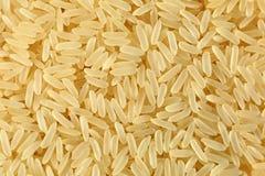 guld- rice Royaltyfri Fotografi