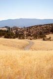 Guld- Rolling Hills Arkivfoto