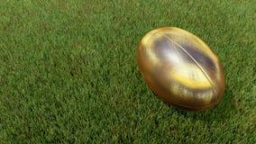Guld- rugbyboll på gräs V01 Arkivfoton