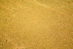 guld- sand royaltyfria foton