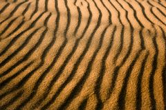 guld- sand arkivbild