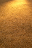 guld- sand Royaltyfria Bilder