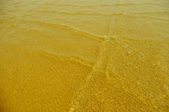 Guld- sandig strand i morgonen Royaltyfri Bild
