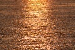 Guld- sjösida royaltyfria bilder