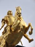 guld- skicklig ryttare Royaltyfri Fotografi