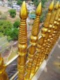Guld- skinande staket i Sri Lanka royaltyfria foton