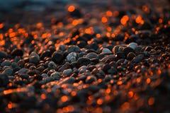 Guld- skinande stenar på stranden royaltyfri bild