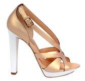 Guld- sko Royaltyfri Fotografi