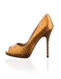 Guld- sko för trendiga kvinnor Royaltyfri Bild