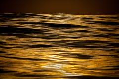 Guld- släta vågor på havet Arkivbild