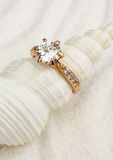 Guld- smyckencirkel på det vita snäckskalet, makro arkivbilder