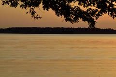 Guld- solnedgång för sjö till och med trädkontur Royaltyfri Bild