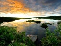 Guld- solnedgång i Alaska Royaltyfria Foton