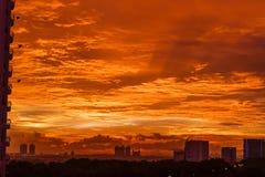 Guld- solnedgång i staden Royaltyfria Foton
