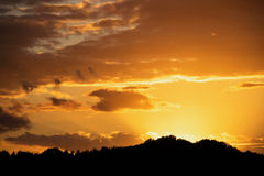 Guld- solnedgång med mest forrest guld- moln för kontur Royaltyfri Fotografi