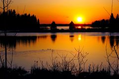 Guld- solnedgång nationalpark över Astotin för sjön, älgö, Alberta royaltyfri bild