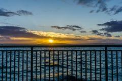 Guld- solnedgång och staket royaltyfri foto