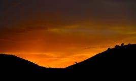 Guld- solnedgång på berg Fotografering för Bildbyråer