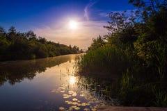 Guld- solnedgång på floden royaltyfria bilder