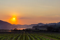 Guld- solnedgång på Silver Lake Pattaya royaltyfri fotografi