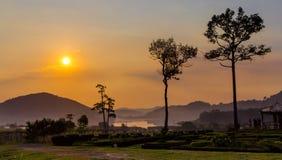 Guld- solnedgång på Silver Lake Pattaya Arkivfoton
