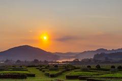 Guld- solnedgång på Silver Lake Pattaya Arkivfoto