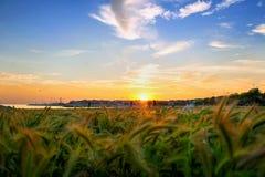 Guld- solnedgång på sjösidan Arkivbilder