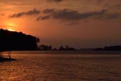Guld- solnedgång till och med trädkontur och reflexionssjön Arkivbilder