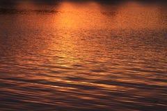 Guld- solnedgångabstrakt begrepp Arkivbilder