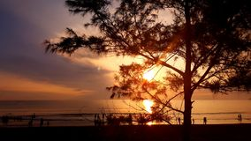 guld- soluppgång fotografering för bildbyråer