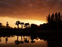 Guld- soluppgångkontur Royaltyfri Bild