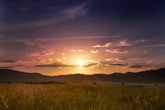 Guld- sommargräs mot bakgrunden av den färgglade solnedgången Royaltyfria Bilder