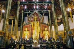 Guld- stående Buddha i Viharn av Wat Chedi Luang, Thailand Royaltyfria Foton