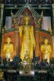 Guld- stående Buddha i Viharn av Wat Chedi Luang, Thailand Royaltyfria Bilder
