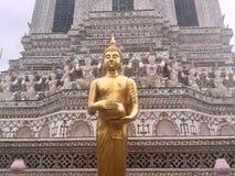 Guld- stående Buddha på den Wat Arun templet, Bangkok, Thailand arkivbilder