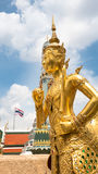 guld- staty för ängel Arkivbild