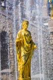 Guld- staty i Peterhof Royaltyfria Foton