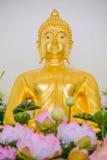 Guld- statyer för Buddha som dekorerar den buddistiska templet Arkivbild