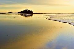guld- Stillahavs- solnedgång för kust Arkivfoton